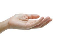 Hand getrennt auf weißem Hintergrund Stockfotografie