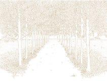 Hand Getrokken Abstracte Vectorlandcape Rechte Parksteeg met Bomen die langs Elke Kant lopen royalty-vrije illustratie
