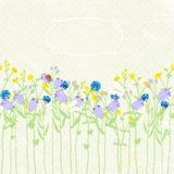Hand getrokken achtergronduitnodiging, wildflowers, vlinder en lieveheersbeestje Vector illustratie Stock Illustratie