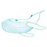 Hand getrokken affiche van een walvis Stock Afbeeldingen