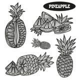 Hand getrokken ananassen Stock Afbeelding