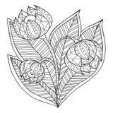 Hand getrokken artistiek etnisch sier gevormd bloemenkader Stock Afbeeldingen