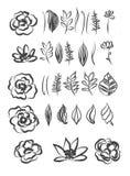 Hand getrokken bloem en van het bladerenelement ontwerp Royalty-vrije Stock Afbeeldingen