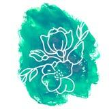 Hand getrokken bloem op waterverfachtergrond Royalty-vrije Stock Fotografie