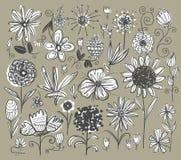 Hand getrokken bloemen Stock Foto's