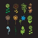 Hand getrokken bloemen Royalty-vrije Stock Afbeelding