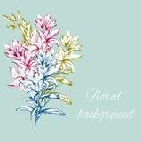 Hand getrokken bloemen De de lentecontour bloeit voor decoratie van festiviteiten op papier, prentbriefkaaren, gelukwens Vector i stock illustratie