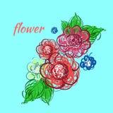 Hand getrokken bloemen Vector illustratie Stock Afbeelding