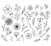Hand getrokken bloemenelementen Geïsoleerde krabbelbloemen Stock Fotografie