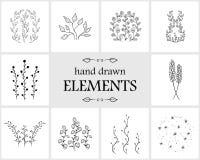 Hand getrokken bloemenembleemelementen en pictogrammen Stock Foto's