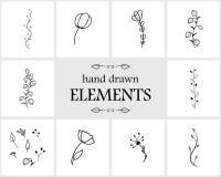 Hand getrokken bloemenembleemelementen en pictogrammen Royalty-vrije Stock Foto