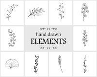 Hand getrokken bloemenembleemelementen en pictogrammen Royalty-vrije Stock Foto's