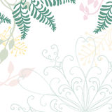 Hand getrokken bloemenvector met het element en de pastelkleuraardillustraties van het kantontwerp van groene varensklimop en blo Stock Afbeelding