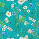 Hand getrokken botanisch naadloos patroon van tuinwildflowers vector illustratie