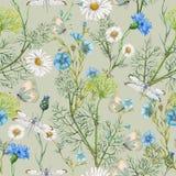 Hand getrokken botanisch naadloos patroon van tuinwildflowers stock illustratie