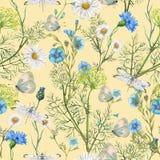 Hand getrokken botanisch naadloos patroon van tuinwildflowers royalty-vrije illustratie