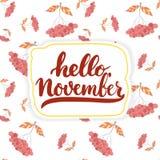 Hand getrokken die typografie het van letters voorzien uitdrukking Hello, November op de witte achtergrond wordt geïsoleerd De in Royalty-vrije Stock Afbeeldingen