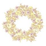 Hand getrokken elegant en romantisch grafisch bloemkader met llightpastelkleuren Stock Fotografie