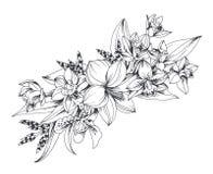 Hand getrokken exotische die bloemen op witte achtergrond worden geïsoleerd royalty-vrije illustratie