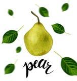 Hand getrokken fruitillustratie Zoete peer en bladeren Schets voor kaart of affiche - het moderne van letters voorzien royalty-vrije stock afbeeldingen