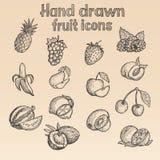 Hand Getrokken Fruitpictogrammen (in Vector) Royalty-vrije Stock Foto's