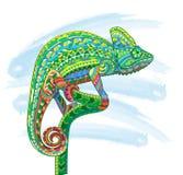 Hand getrokken gekleurde het kameleonillustratie van het krabbeloverzicht Royalty-vrije Stock Afbeeldingen