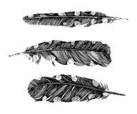 Hand getrokken gestippelde veren op witte achtergrond Royalty-vrije Stock Fotografie