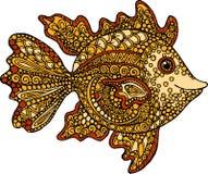 Hand getrokken goudvisillustratie Decoratieve siervissentekening Stock Foto's