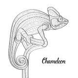 Hand getrokken het kameleonillustratie van het krabbeloverzicht Decoratief in zentanglestijl Gevormde vurig op grunge Stock Foto