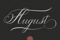 Hand getrokken het van letters voorzien August Elegant moderne met de hand geschreven kalligrafie Vectorinktillustratie Stock Foto