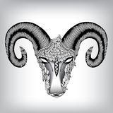 Hand Getrokken Hoofd van Aries Illustration Royalty-vrije Stock Afbeeldingen