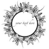 Hand getrokken kader van lilly bloemen vector illustratie