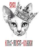 Hand getrokken kat van ras het Sfinxportret royalty-vrije illustratie