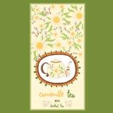 Hand getrokken malplaatje verpakkende thee, etiket, banner, affiche, identiteit, het brandmerken Stock Fotografie