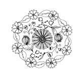Hand getrokken mandala met verschillende bloemen, antispanningstherapie p Royalty-vrije Stock Fotografie