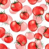 Hand getrokken naadloos herhaald patroon met waterverf rijpe rode tomaten Royalty-vrije Stock Afbeeldingen