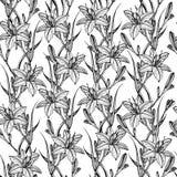 Hand getrokken naadloos patroon met leliebloemen stock foto