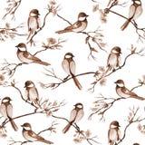 Hand getrokken naadloos patroon voor schoonheidssalon met het kappenhulpmiddelen royalty-vrije stock afbeeldingen