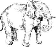 Hand getrokken olifant Royalty-vrije Stock Fotografie