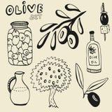 Hand getrokken olijfreeks Reeks elementen Olijven, olijfolie, tak en boom op achtergrond Stock Afbeeldingen
