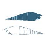 Hand getrokken overzeese shell Geïsoleerde Vector illustratie Royalty-vrije Stock Afbeeldingen