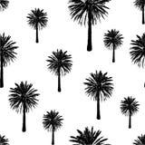 Hand getrokken palmen naadloos patroon Exotische in achtergrond met tropische kokosnotenpalm Stock Fotografie