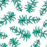 Hand Getrokken patroon met bloemen en kruiden uitstekende bloemenelementen royalty-vrije illustratie