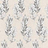 Hand getrokken pen grayscale naadloos patroon met olijftakken stock illustratie