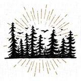 Hand getrokken pictogram met een geweven nette bomen vectorillustratie Stock Afbeeldingen