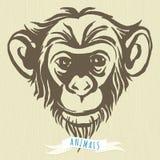Hand getrokken portret van aapchimpansee royalty-vrije illustratie