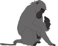 Hand getrokken portret van een wilde baviaan stock illustratie