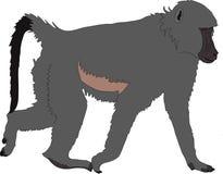 Hand getrokken portret van een wilde baviaan vector illustratie
