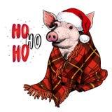 Hand getrokken portret van varken die hertenhoornen en deken dragen Fractal Kerstboom Colorebiggetje Kerstmis, Nieuwjaar royalty-vrije illustratie