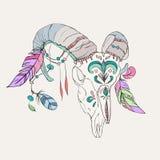 Hand getrokken ramsschedel met kleurrijke veren Vector Illustratie